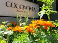 Coconoma Season Dining at H&R Roppongi