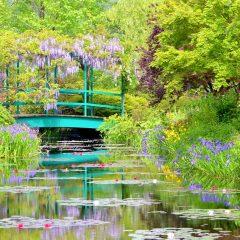 高知県の隠された秘宝ともいうべき名所が『ロンリープラネット』に掲載されています!