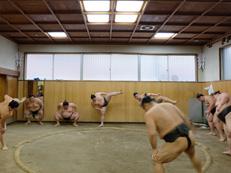 Deep Japan - The Sumo Experience