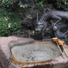 Enoshima Island dragon