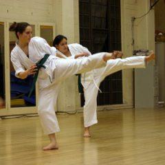 karate training tokyo japan