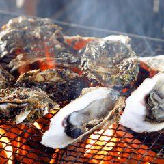 Hiroshima Oyster Season