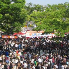 Tokyo Thai Festival