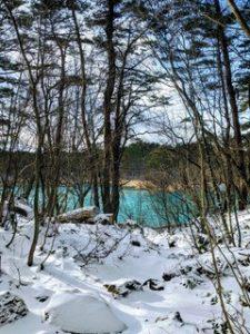 Jarman International assists with new Aizu Wakamatsu website to promote the beauty of Fukushima